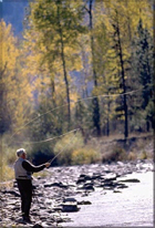 Conejos River Fly Fishing Northern New Mexico and Southern Colorado